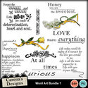 Word-art-bundle-1_small