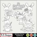 Birthday_bunny_ds_small