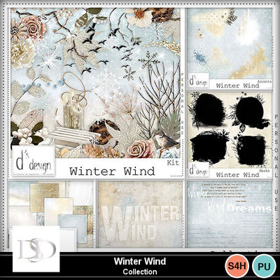 Dsd_winterwind_collectionmm