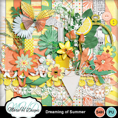 Dreaming_of_summer_combo01