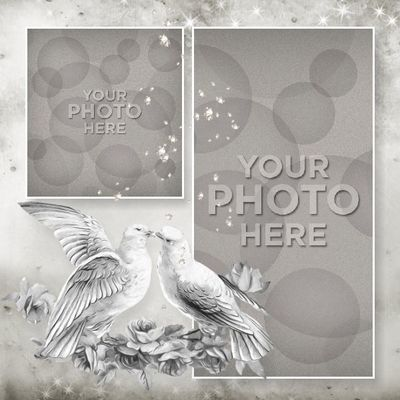 Bigphotoweddingbook-014