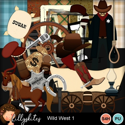 1wildwest1