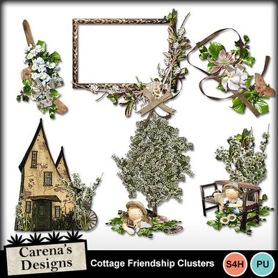 Cottage-friendship-clusters