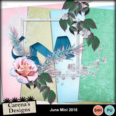 June-mini-2015