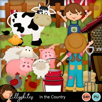 Inthecountry1