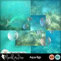 Aquabgs-prev_small