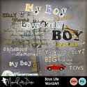 Boyslife-wa_small