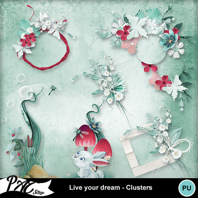 Patsscrap_live_your_dream_pv_clusters