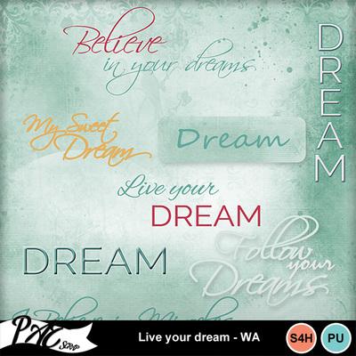 Patsscrap_live_your_dream_pv_wa