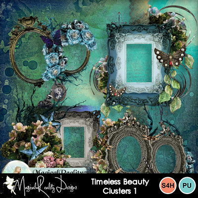 Timelessbeauty_prev_clusters1