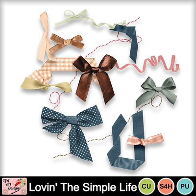 Lovin_the_simple_life_br_preview