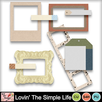 Lovin_the_simple_life_ft_preview
