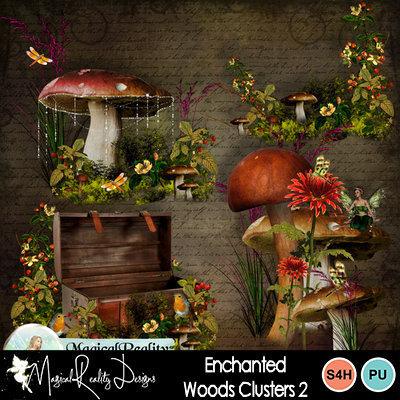 Enchantedwoods_prev_cluster2