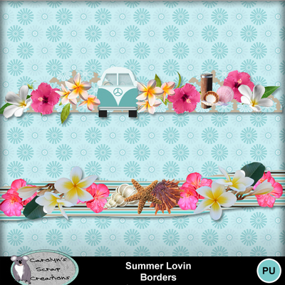Csc_summer_lovin_wi_borders