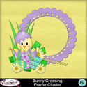 Bunnycrossing_framecluster1-1_small
