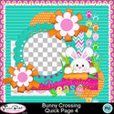 Bunnycrossing_qp4-1_small