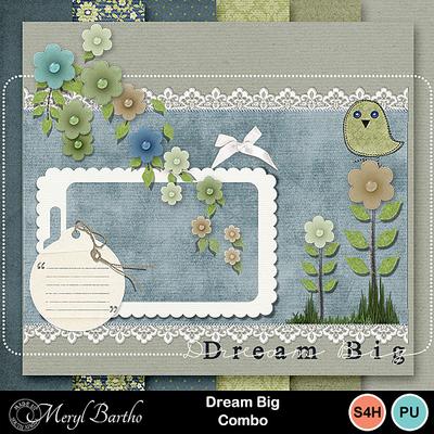 Dreambig-combo