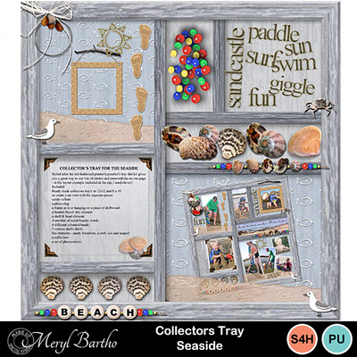 Collectorstrayseaside