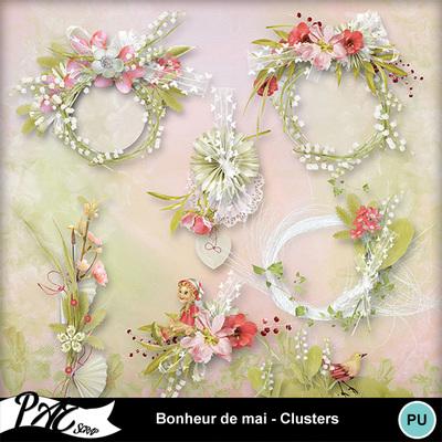 Patsscrap_bonheur_de_mai_pv_clusters