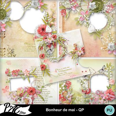 Patsscrap_bonheur_de_mai_pv_qp