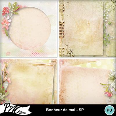 Patsscrap_bonheur_de_mai_pv_sp