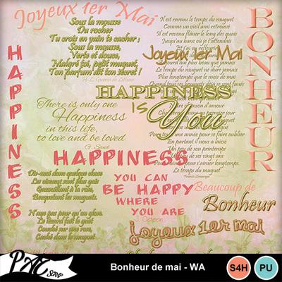 Patsscrap_bonheur_de_mai_pv_wa