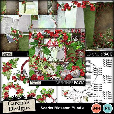 Scarlet-blossom-bundle_01