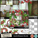 Scarlet-blossom-bundle_01_small