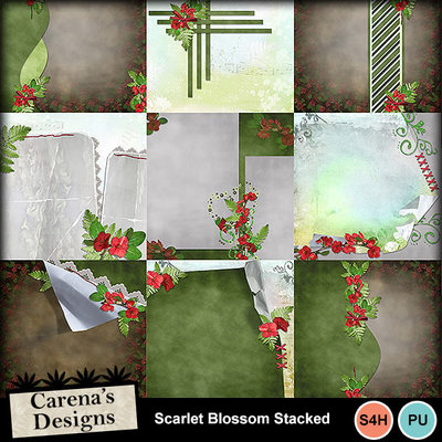 Scarlet-blossom-bundle_06