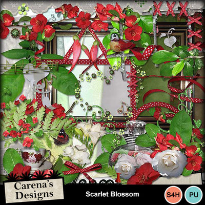 Scarlet-blossom-bundle_02