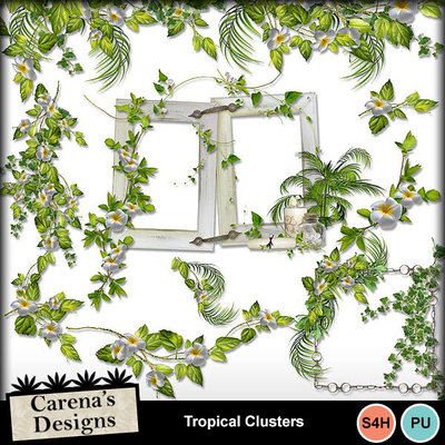 Tropical-clusters-1