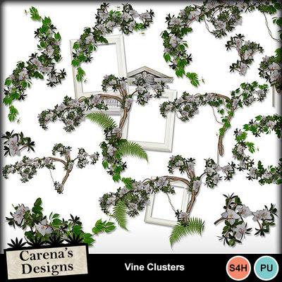 Vine-clusters-1