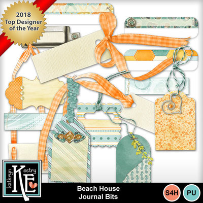Beach-house-journalbits
