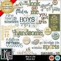 Boy_slife-wordart_small