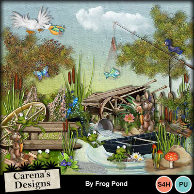 By-frog-pond-kit