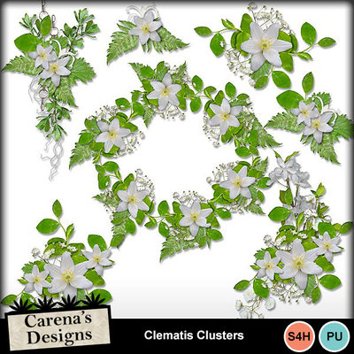 Clematis-clusters-1