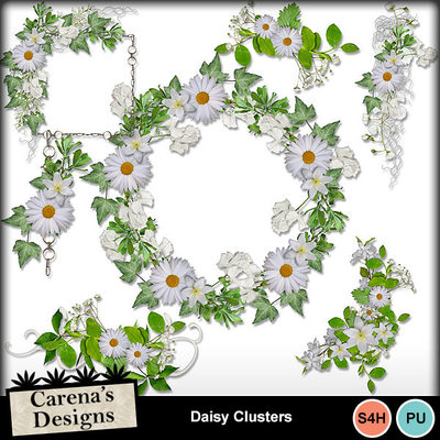Daisy-clusters-1