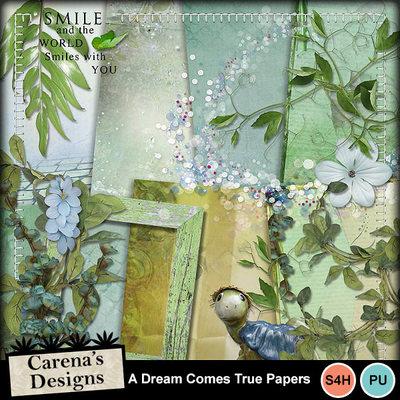 A-dream-comes-true_02