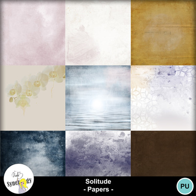 Si_solitudepapers_pvmm-web