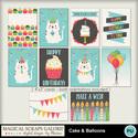 Cake-_-balloons-5_small