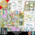 Changinglivesbundle01_small