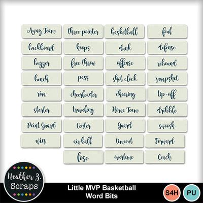 Little_mvp_basketball_5