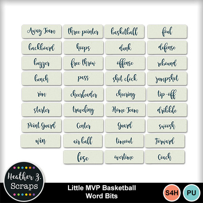 Little_mvp_basketball_6