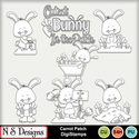 Carrot_patch_ds_small