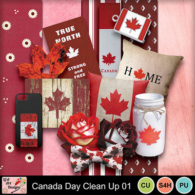 Canada_day_clean_up_paper_preview