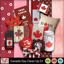 Canada_day_clean_up_paper_preview_small