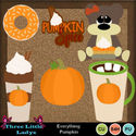 Everything_pumpkin-tll_small