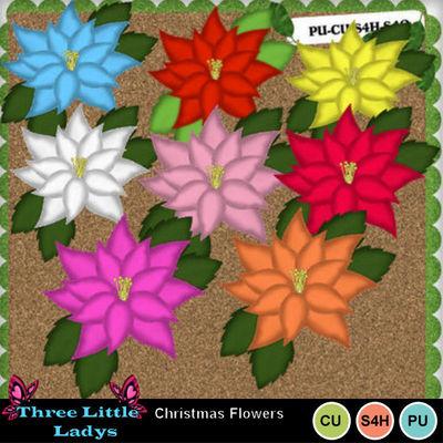 Christmas_flowers-tll