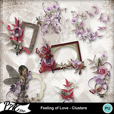 Patsscrap_feeling_of_love_pv_clusters