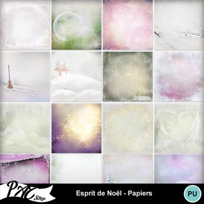 Patsscrap_esprit_de_noel_pv_papiers